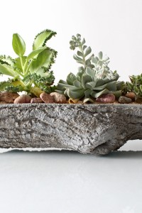 TreeTrough4(WEB)_680x1020%20(huge%20product)