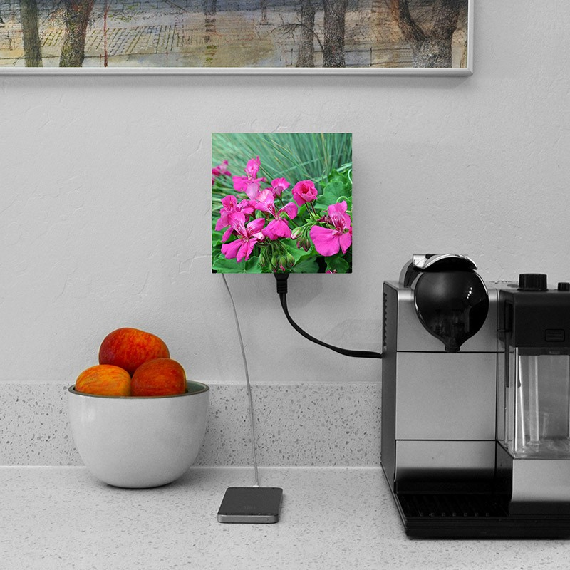 living-plug-faceplate-flowers