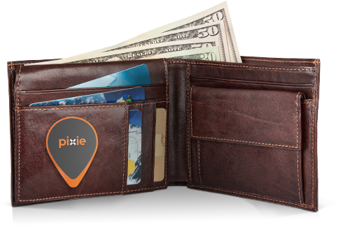 Pixie Can Help Lost Items Be Found