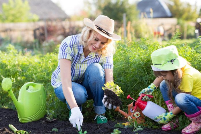 Three Easy Gardening Projects For Your Kids