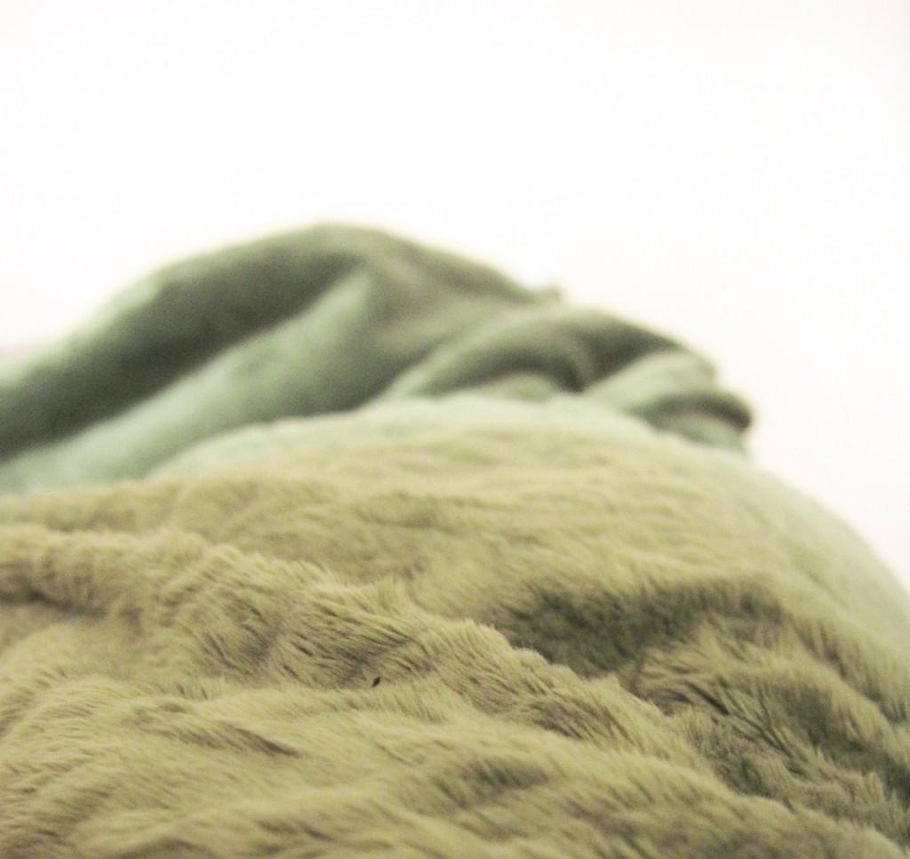 softest blanket ever