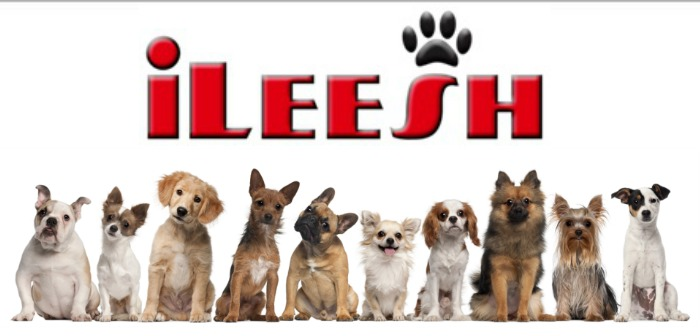 iLeesh Featured Image