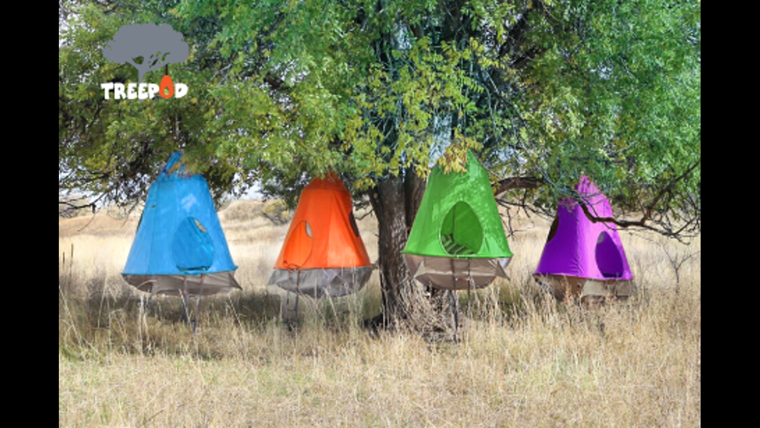 treepod-picture