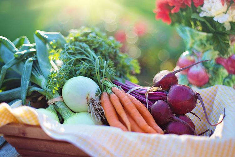 Eat a more humane and healthy menu