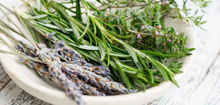 The Top 5 Benefits to Using Herbs