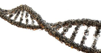 Things To Think About Before Taking a DNA Test