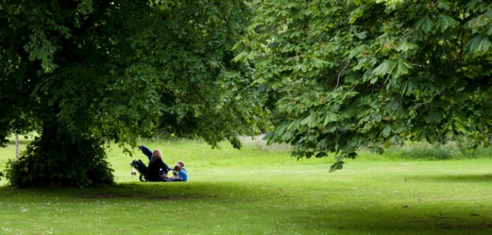Top 5 Tips — Picnic Food for Children
