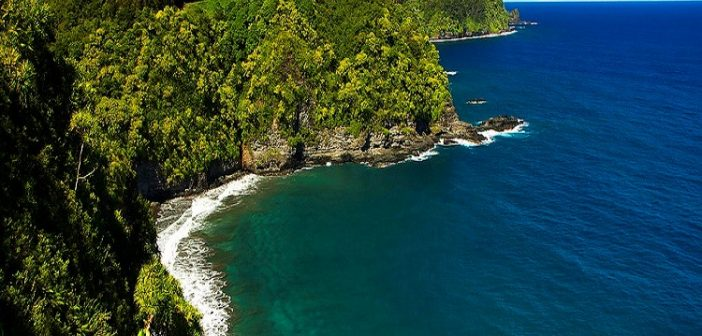 Things To Do and See on the Road to Hana in Maui